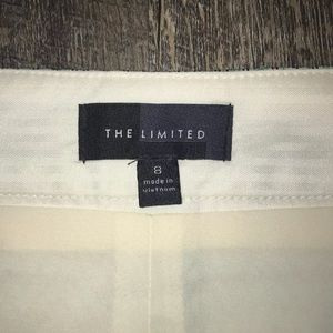 The Limited Skirts - The Limited Skirt- Size 8